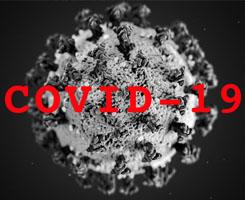 COVID-19 - Dispositions et informations pour les ressortissants croates et étrangers